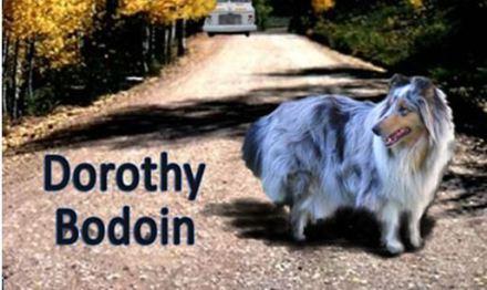 dog from sky bodoin