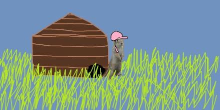 litte house gopher